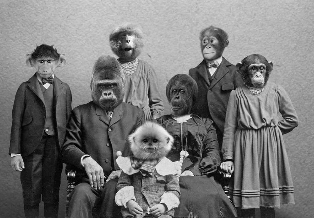 strange_family_by_bakus_design-d6cfto7